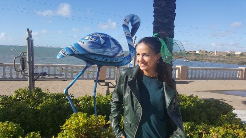 Visitando las marismas de San Fernando y sus flamencos